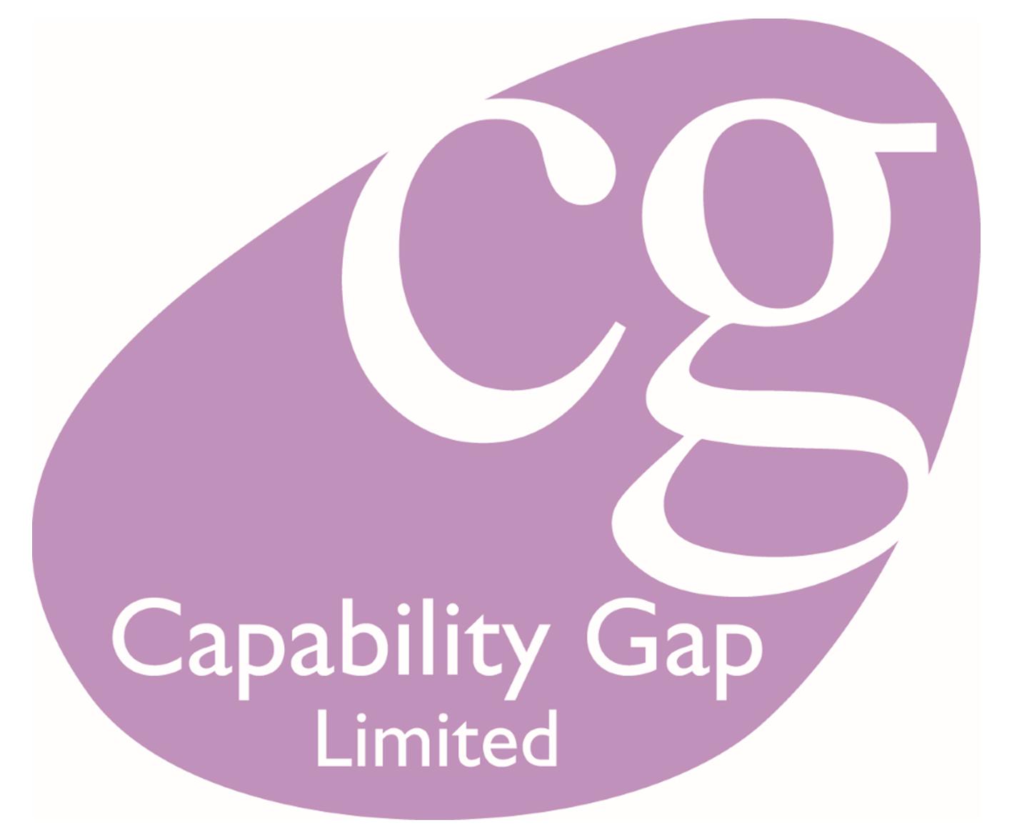 Capability Gap – Management Consultants